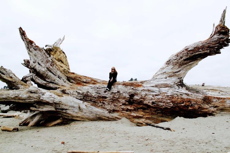 Fallen Tree on First Beach | One Chel of an Adventure