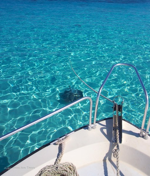 Best tour attractions Grand Cayman
