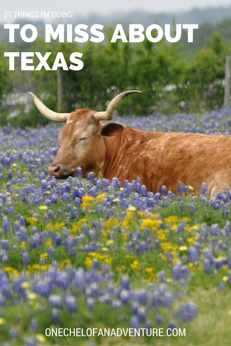 21 Things To Miss About Texas