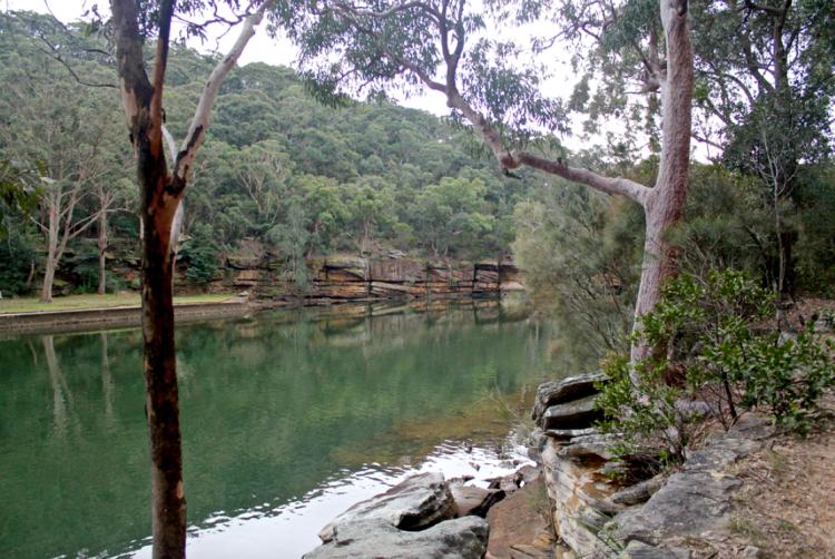 River at Royal National Park