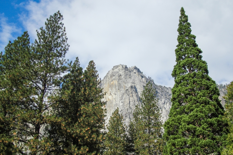 10 Stunning Photos from Yosemite Valley Drive-5