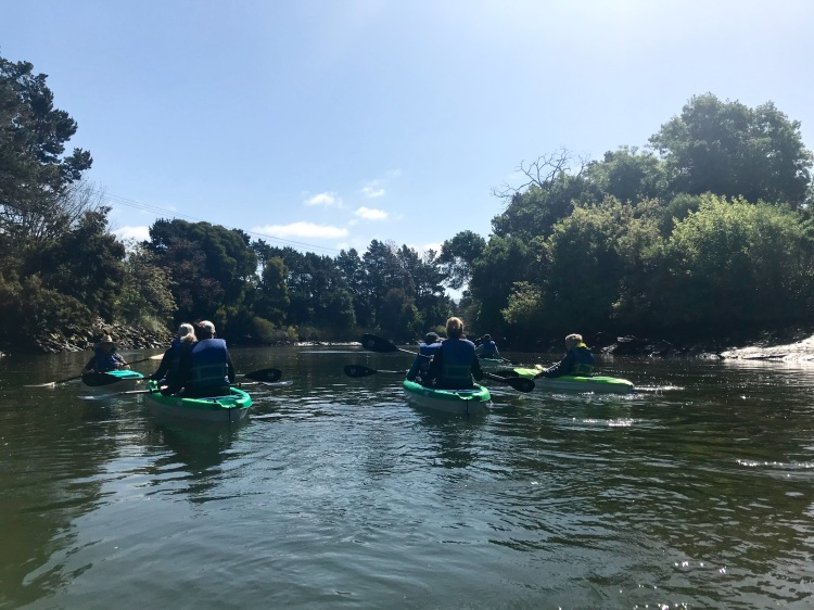 Napa River Kayaking - Downtown 2